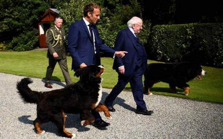 Macron Harap Irlandia Melunak Soal Konsensus Pajak Internasional