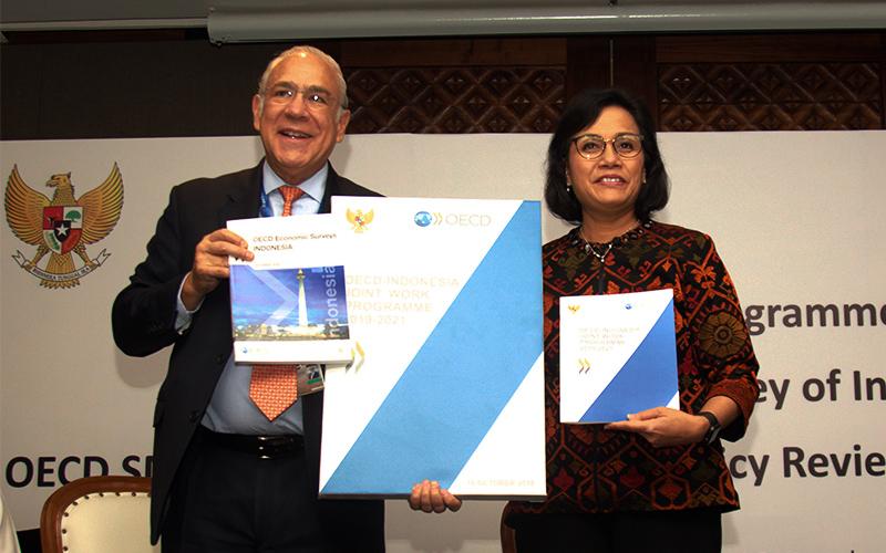 Lanjutkan Kemitraan dengan OECD, Indonesia Ambil Manfaat Ini