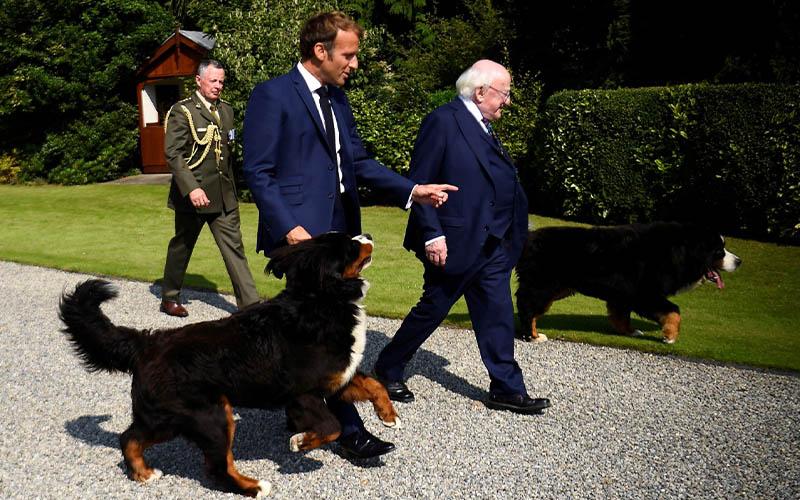 Soal Konsensus Pajak Global, Irlandia Minta Kepastian dari AS