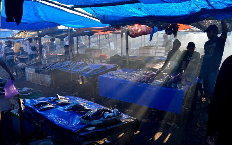 Sumbang Emisi, Diskon Pajak Bagi Kapal Penangkap Ikan Perlu Dihapus
