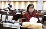 Hadiri Rapat Menkeu se-Asean, Sri Mulyani Singgung Soal Vaksinasi