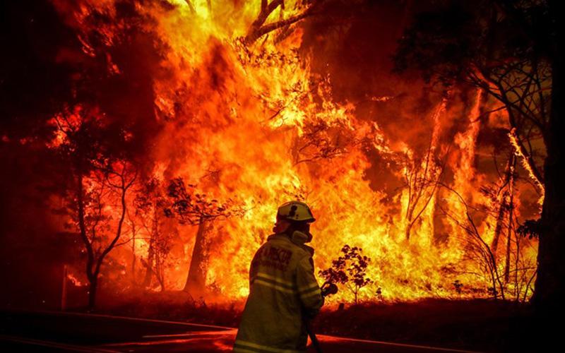 Otoritas Beri Penangguhan Pajak Bagi Korban Kebakaran Hutan