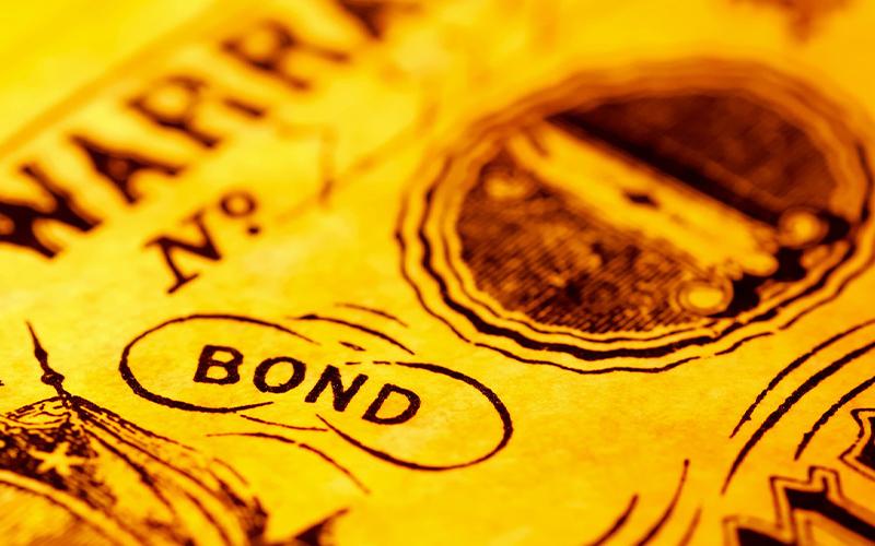 November 2020, Pemerintah Akan Luncurkan Diaspora Bond