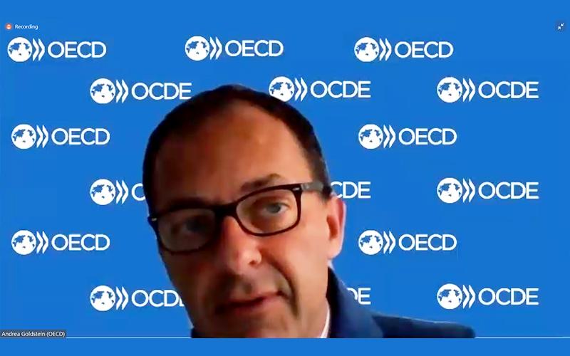 Sebut Tax Ratio Jadi Masalah Cukup Serius, OECD Beri Rekomendasi Ini