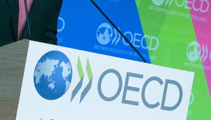 OECD Berikan Rekomendasi PPN Digital Bagi Amerika Latin