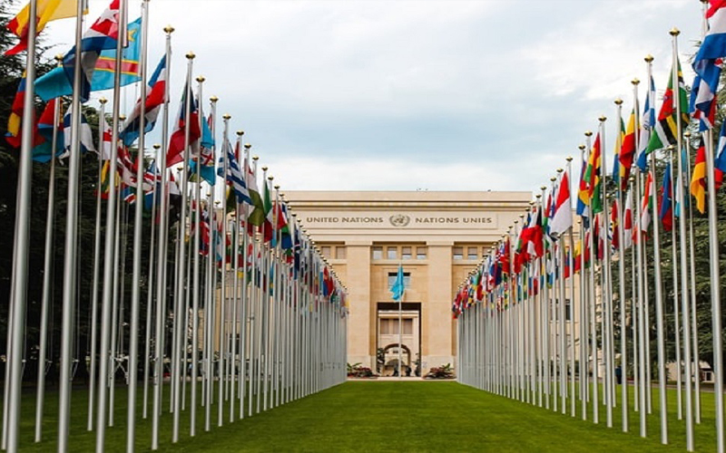 PBB Tunjuk 25 Anggota Baru UN Tax Committee, Ada Perwakilan Indonesia
